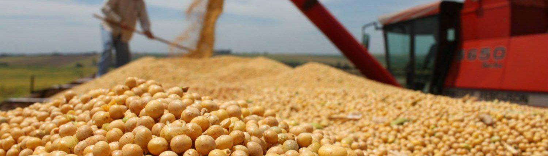 Venta de granos